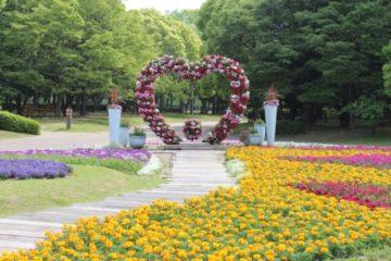 Nagai Botanical Garden1