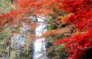 大阪のおすすめの滝 4選!自然を感じて気分爽快リフレッシュ!
