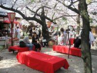 高津宮 桜まつり