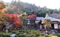 天野山金剛寺 紅葉の見ごろ